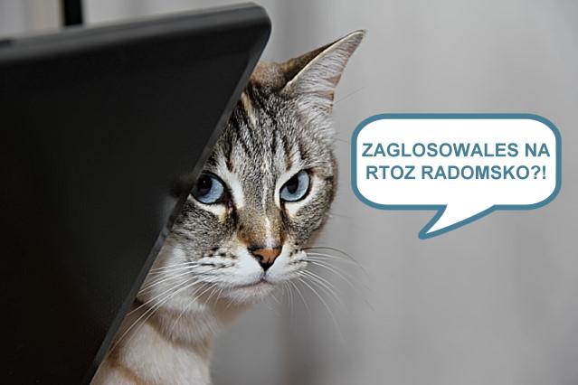 https://fotoforum.gazeta.pl/photo/5/xe/yb/ncoj/yJLGfaIRfWXmbR2RuX.jpg