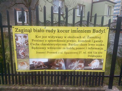 https://fotoforum.gazeta.pl/photo/9/fi/gb/v6x4/MsctI0cmbVsaGp2I2X.jpg